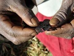 UN Study Finds More Women Face Genital Mutilation Than Earlier Estimated
