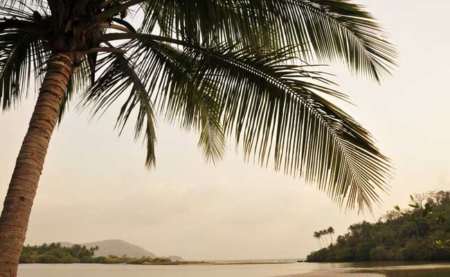 British Tourist Allegedly Raped Near Beach In Goa, Robbed By Attacker