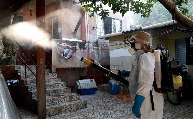 Zika Virus Cases Drop In Brazil: WHO