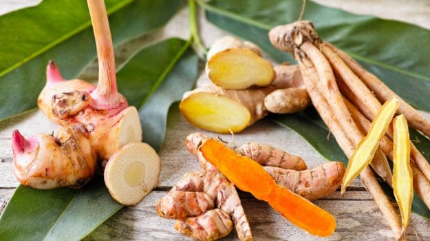 Try Galangal in Your Favorite Recipes for a Taste Of Asia