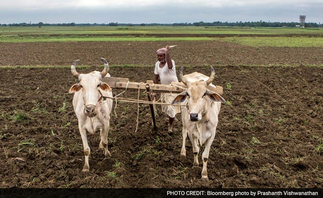 Watch Farmer Incomes To See If Modi Is Really Transforming India