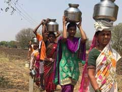In Drought-Hit Marathwada, Parched Wells, Lifeless Fields And Little Help