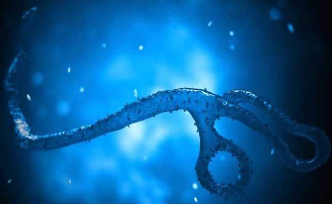 World Health Organization Praises India For Launch Of Rotavirus Vaccine
