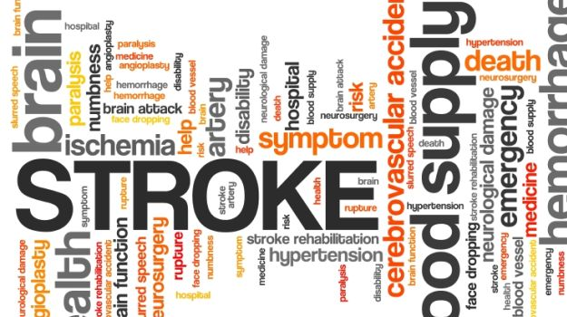 Gut Bacteria May Help Prevent Stroke: Study