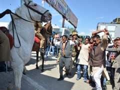 उत्तराखंड : घोड़े को जख्मी करने के आरोपी बीजेपी विधायक को नहीं मिली जमानत