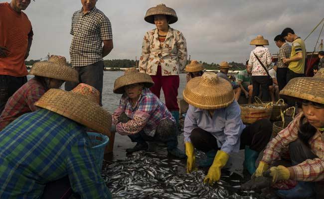 China's Front-Line Fishermen