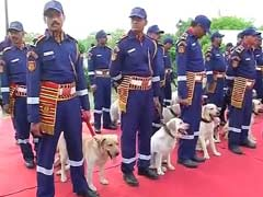 30 Labradors Inducted In Delhi Police Dog Squad