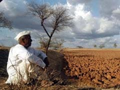 Drought-Hit Karnataka To Get Rs 723 Crore In Central Assistance