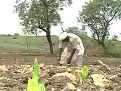 116 Farmers Committed Suicide In Last 3 Months, Says Government