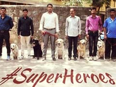 Mumbai Police's 'Superheroes' Are Winning Twitter, Fur Sure
