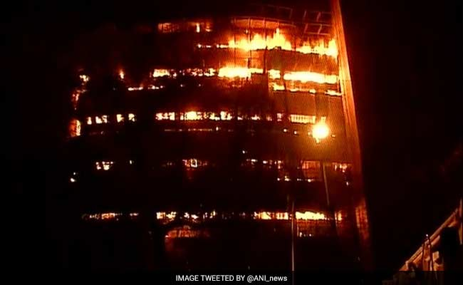 Delhi's National Museum of Natural History Destroyed In Massive Fire