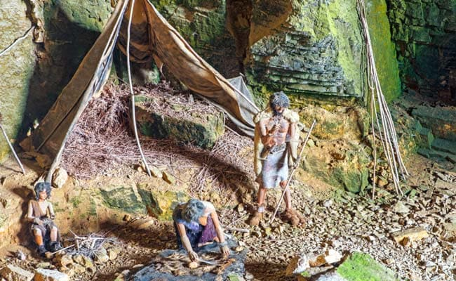 Diseases Carried By Humans Linked To Neanderthal Extinction: Study