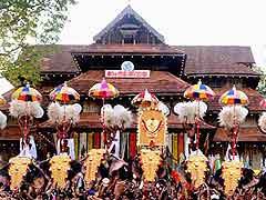 Recently Concluded Thrissur Pooram Violated Animal Rights, Alleges Activist