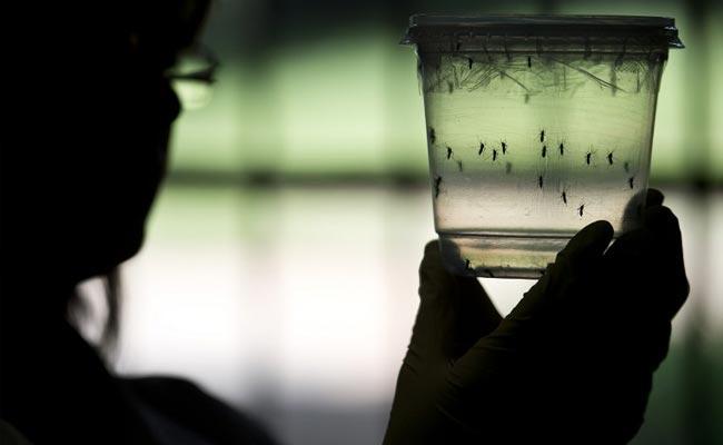 Singapore Confirms 2 New Cases Of Zika Virus
