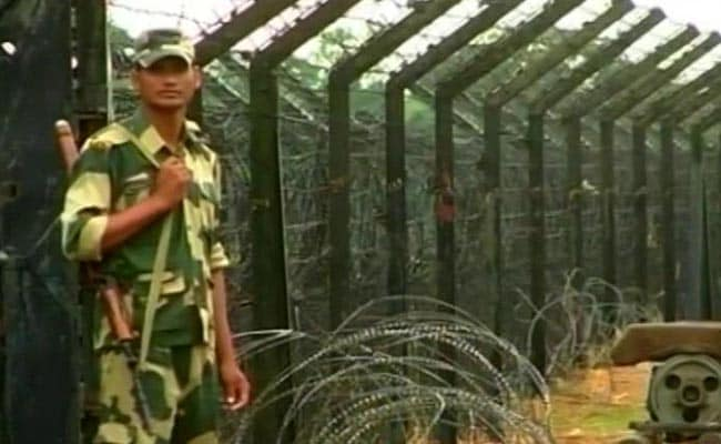 249 Cattle Seized From Bangladesh Border In Meghalaya