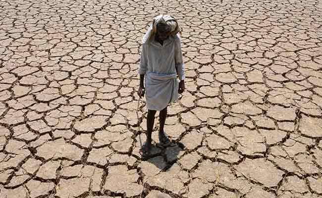 मानवीय गतिविधियों का नतीजा है चरम गर्मी, बरिश और सूखे के हालात : रिसर्च