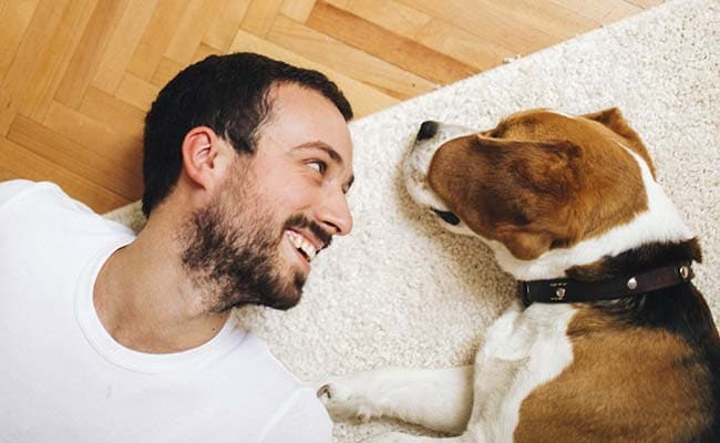 True Love? Dog's Heart Beats In Sync With Its Owner: Study