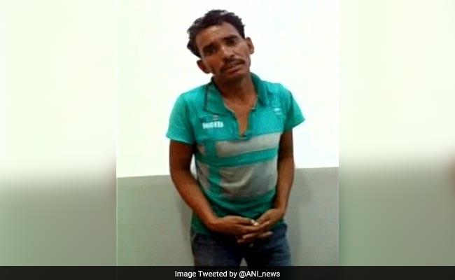 Drunk Man Who Entered Lion Enclosure Gets 4 Months In Jail