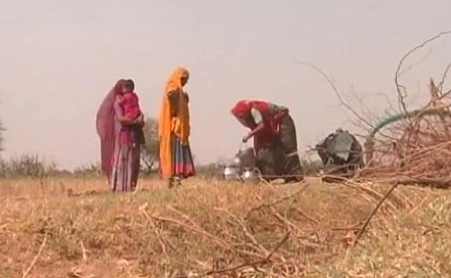 13,500 Villages In Rajasthan Run Out of Drinking Water As Crisis Deepens