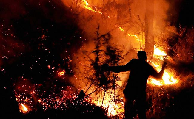 Guatemalan Drug Lords Burning Forests To Land Planes