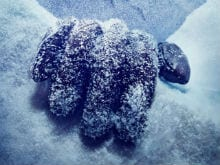 On Twitter, Ajay Devgn Makes a Shivaay Announcement. Winter is Coming