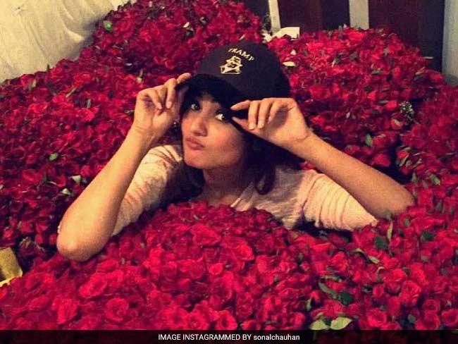 PHOTOS: आखिर कौन है सोनल चौहान का यह दीवाना, जो हमेशा भेजता है हजारों गुलाब