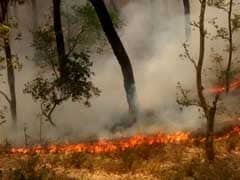 Uttarakhand Forest Fires: Centre Says Situation Under Control