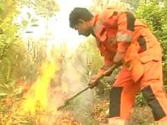 8 Men, 8 Hours: That's What It Took To Douse Fire On 1 Hill Of Uttarakhand