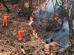 इनके हौसले की लक्ष्मण रेखा को पार नहीं कर सकी हिमाचल के जंगलों की आग