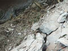 10 Labourers Killed In Uttarakhand Landslide After Heavy Rain