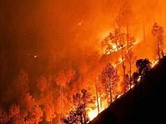 उत्तराखंड के जंगलों में आग लगने के मामले में नैनीताल हाईकोर्ट के आदेशों पर रोक