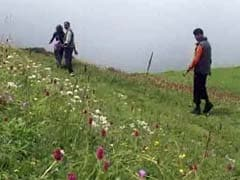 3 Years After Kedarnath Tragedy, Valley Of Flowers To Re-Open Tomorrow