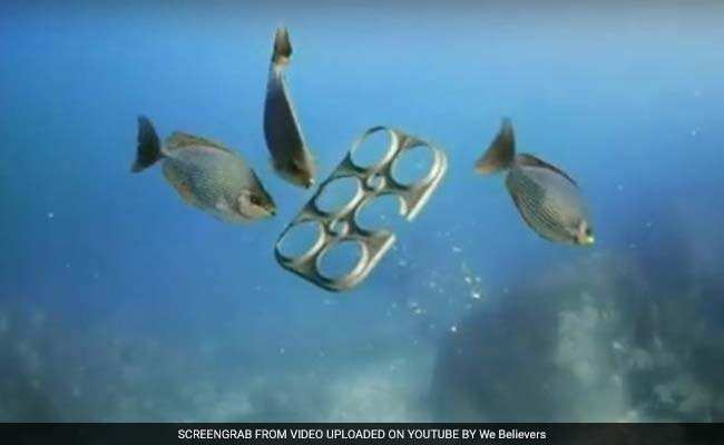 Edible Six-Pack Rings Seek To Limit Harm To Sea Life