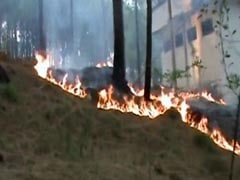 Forest Fires Rage In Pirpanjal Region In Jammu And Kashmir