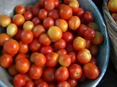 Skincare: How Tomatoes Help To Make Your Skin Healthy And Glowing