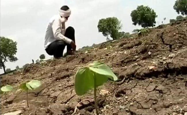 Halting Irrigation Projects In Maharashtra's Marathwada May...: BJP MLA