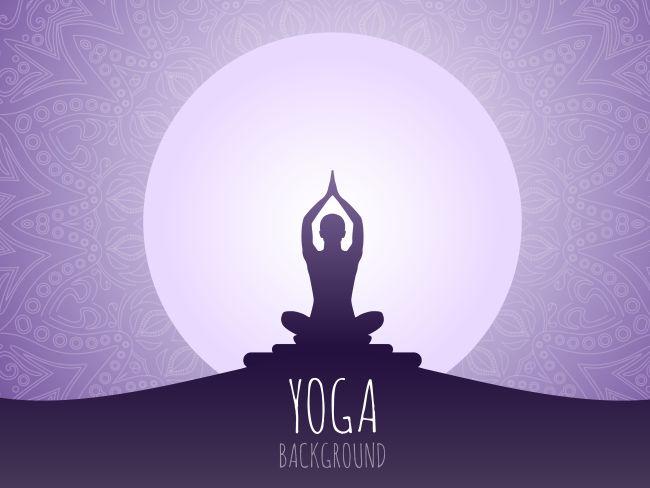 International Yoga Day celebration in France