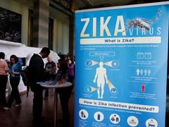 Tapeworm Drug Could Cure Zika Virus Infection