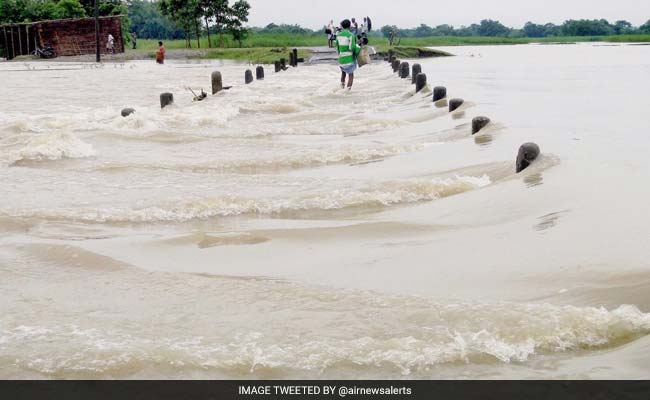 बाढ़ से जीव-जंतुओ को भी भारी नुकसान, नेपाल से बहकर आए गैंडे को बिहार में बचाया गया
