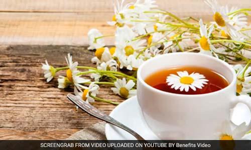 Chamomile Tea Benefits For Health: Chamomile Tea Is A Treasure Of Qualities, Here Are Amazing Benefits Of Drinking Herbal Tea