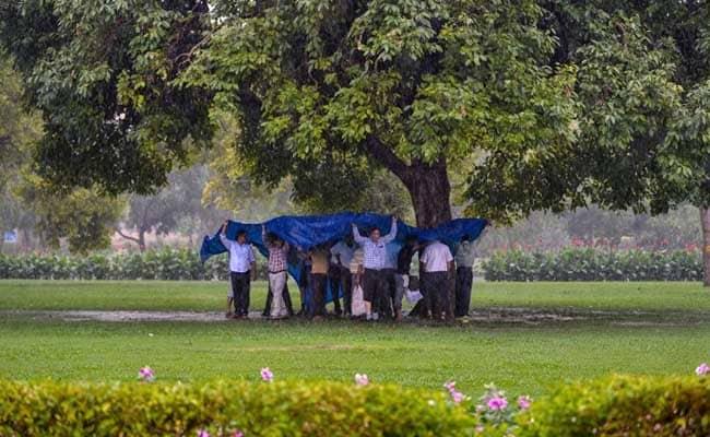 Pleasant Morning After Rain Cures Delhi's Monday Blues