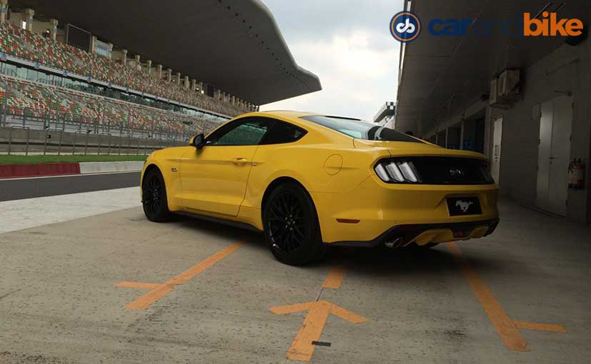 Ford Mustangs Rear Profile
