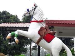 पुलिस सम्मान से दफनाए गए घोड़े 'शक्तिमान' की प्रतिमा पहले लगाई गई, अब हटाई गई