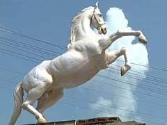 Shaktiman, Horse Buried With Full Police Honours, Gets And Loses Statue