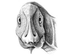 This Little Duck-Billed Dinosaur Had A Facial Tumor That Still Affects Humans Today