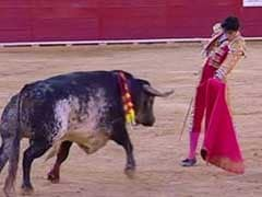 Spanish Bullfighter Dies After Being Gored