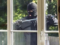 Delhi's 'Spiderman' Burglar, Expert At Scaling Walls, Caught, Say Police