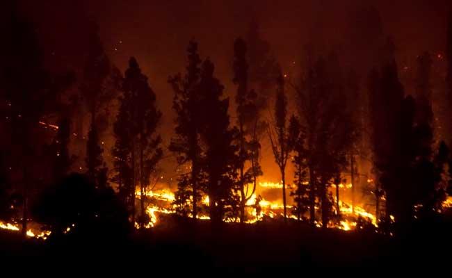 अमेरिका में कैलिफोर्निया के जंगल में आग, 10 मरे