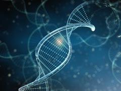 Designer Baby Next? US Scientists Modify Genes Of Human Embryo