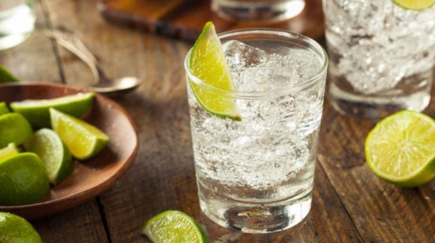 The Story of Gin: Sipping into Gin and Tonic, Martini and More